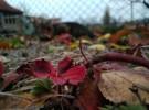Podzimní fotosoutěž