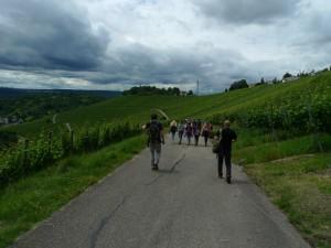 Procházíme se mezi vinicemi na dohled od Stuttgartu