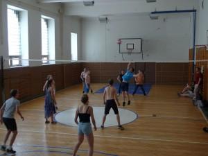 Mezinárodní volejbalové utkání