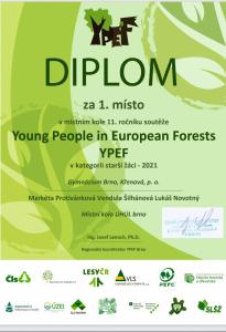 YPEF_1
