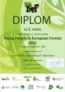 YPEF_2