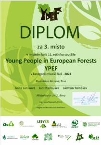 YPEF_3