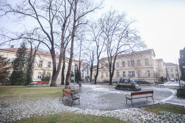 prf-park